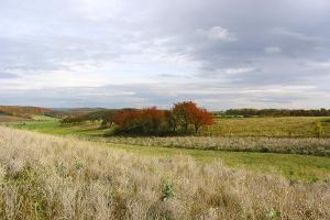 Atzenhausen - Felder im Herbst